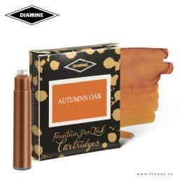 diamine tintapatron autumn oak 6db 001