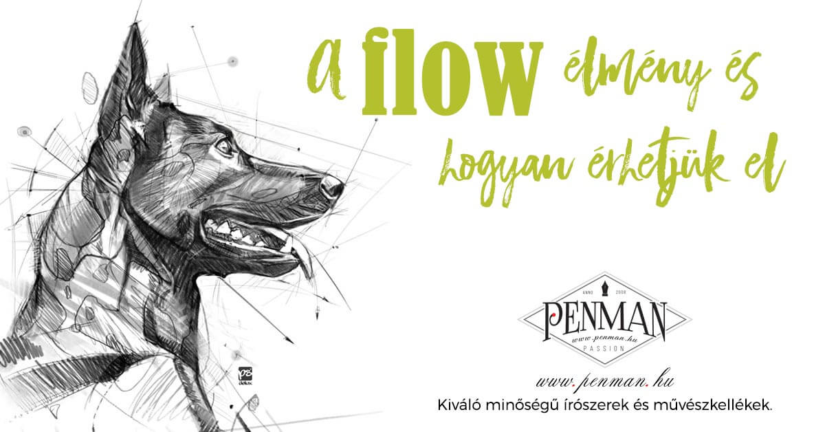 flow elmeny es hogyan erhetjuk el 001