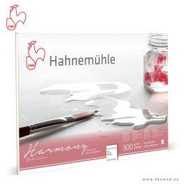 hahnemuhle harmony 300g akvarell papir cp